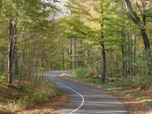 winding-road-71367_1280